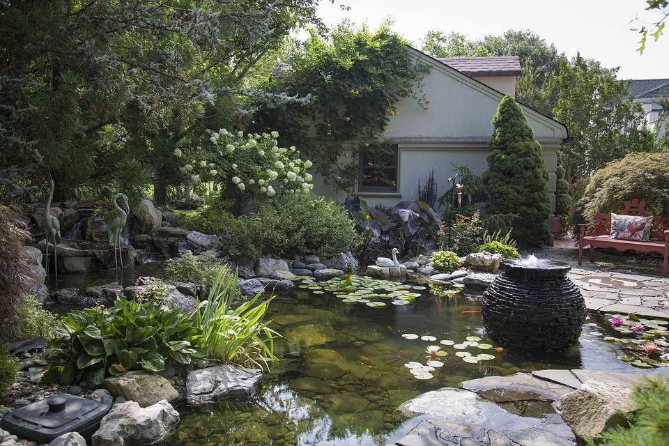 bassin de jardin – BASSIN ET KOI: MODE D\'EMPLOI